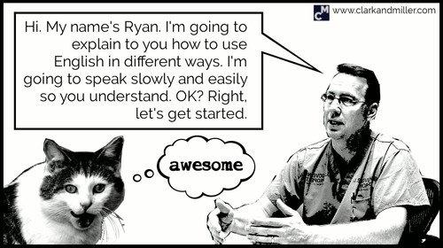 English teacher talking to a cat