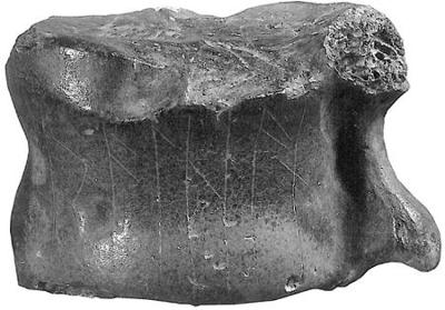 Raihan - Roe deer bone