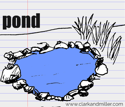pond drawing with text