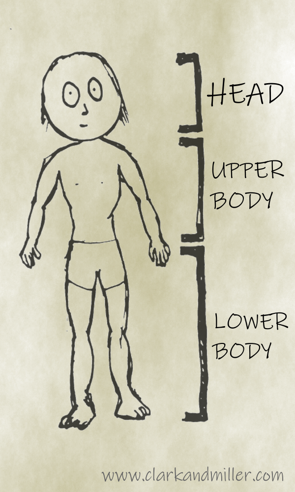 Cartoon sketch of a man with labels head, upper body, lower body