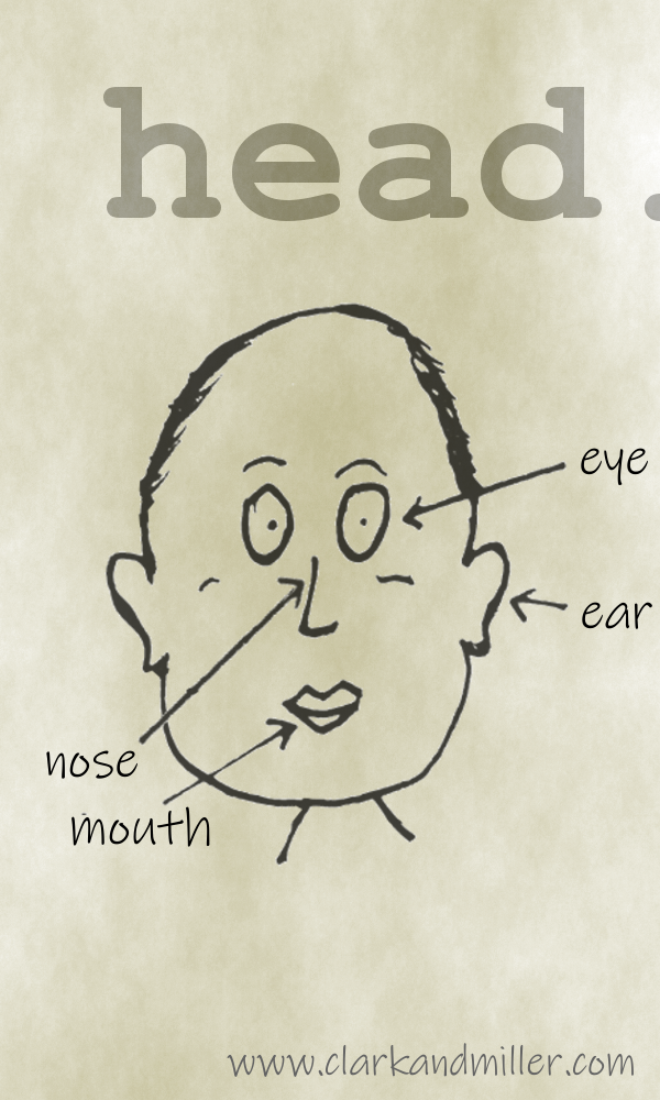 Head with labels eye, ear, nose, mouth