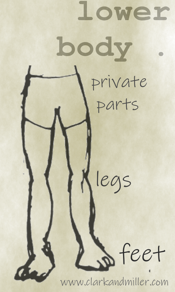 Lower body with labels legs, feet