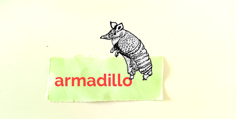 Sketch of an armadillo. The word 'armadillo' is written on green paper.