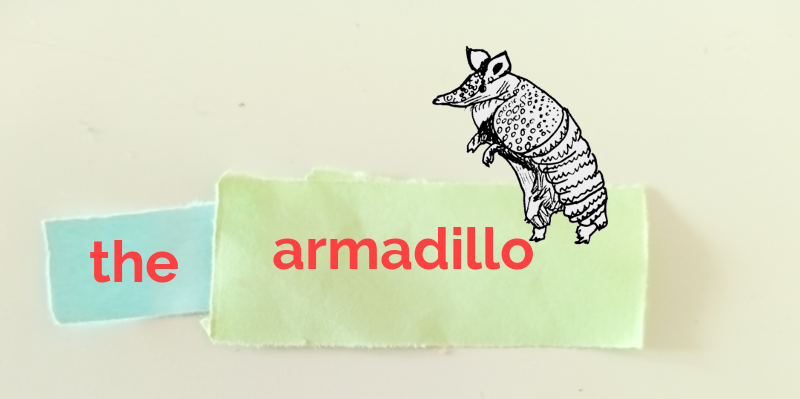Sketch of an armadillo. The word 'the' is written on blue paper on the left. The word 'armadillo' is written on green paper on the right.